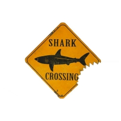 Metallschild Shark Crossing Deko-Schild 38x38x1,5cm