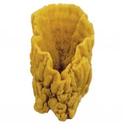 Naturschwamm XXL von Croll&Denecke Höhe ca. 24 cm