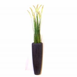 Pflanzarrangement Foxtail Gras in 2 Größen