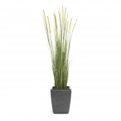 Kunstpflanze Foxtail Gras 120 cm