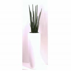 Pflanzarrangement Baton Plant in 2 Größen